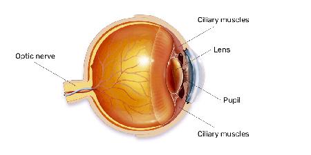 eye-strain-header